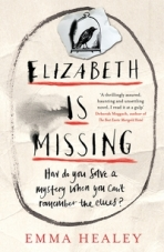 alli-elizabeth-is-missing