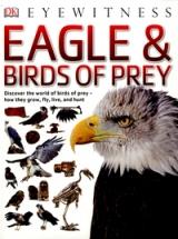 montse-falcon-eagles
