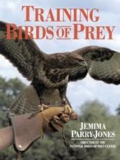 montse-falcon-training