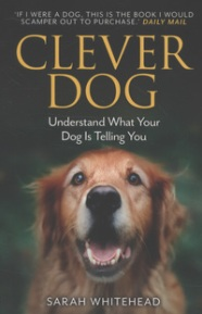 Lisa Clever dog